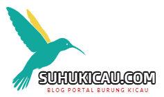 suhukicau.com