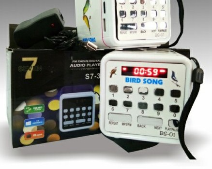 masteran-audio-mp3