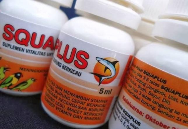 Vitamin-Squaplus